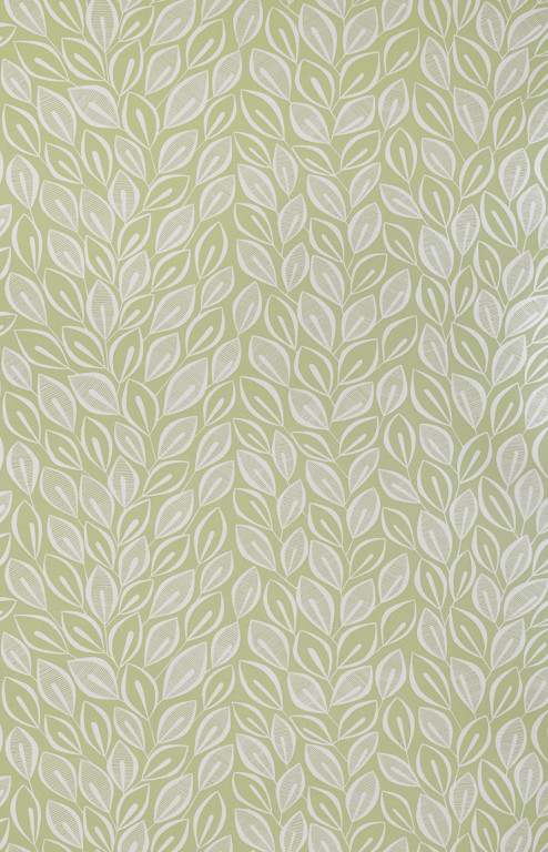 Leaves Absinthe With White Wallpaper