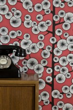 Cotton Tree Wallpaper Lifestyle